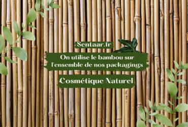Le bambou une alternative écologique