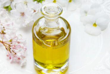 L'huile de Jojoba votre allié au quotidien